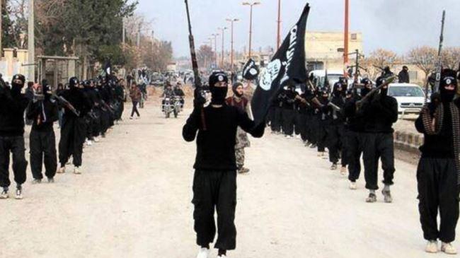 US airstrikes will not eradicate terrorism in region Iran Majlis speaker