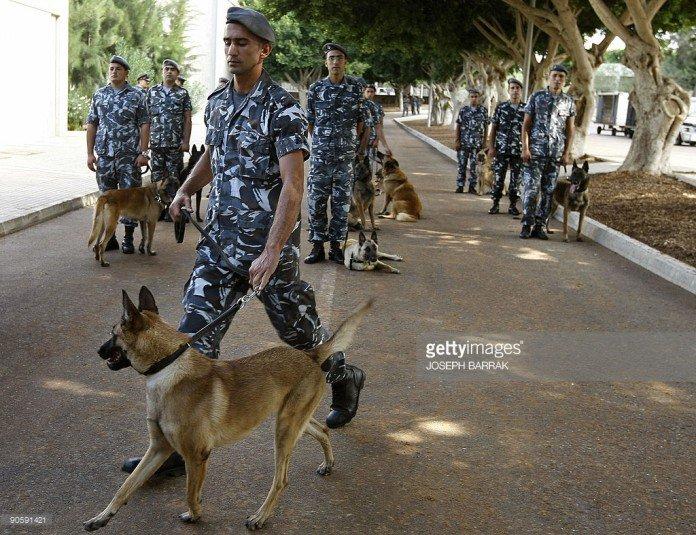 Lebanese-forces-696x535-1